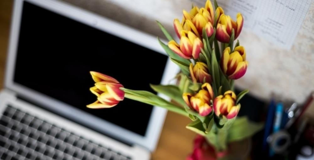 Live chat staje się jednym z głównych narzędzi komunikacji z klientem w e-sklepie. Dowiedz się jak go używać, by Twoi klienci byli zadowoleni!